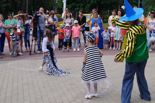 zebra_7
