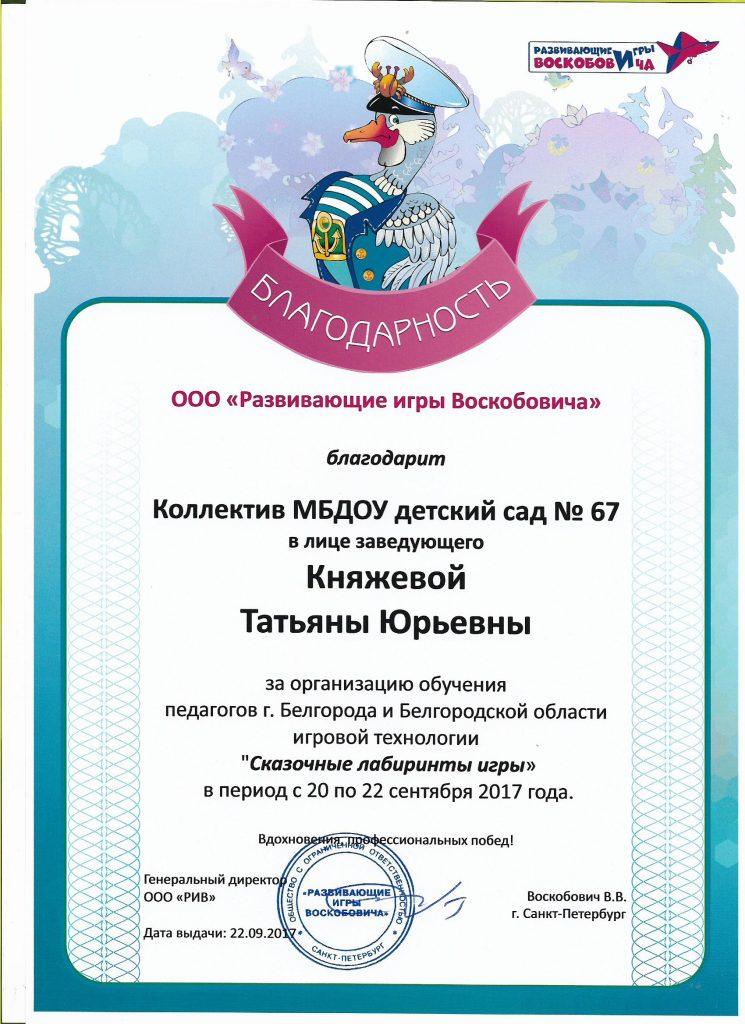 благодарность Воскобович